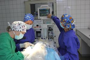 OP-Tierklinik