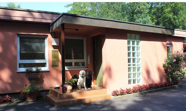 Kleintierpraxis Klinik